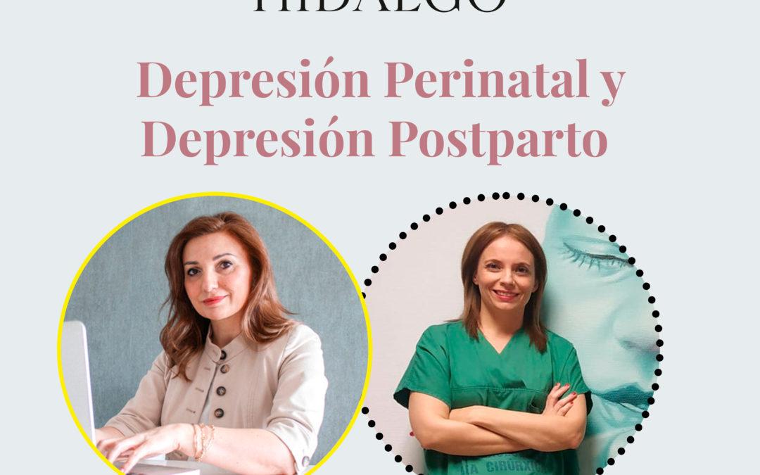 Estudios dirigidos a reducir la depresión materna durante el embarazo y después del embarazo